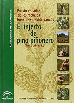 portada Puesta en valor de recursos forestales mediterráneos : el injerto del pino piñonero
