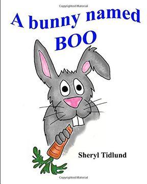 portada A bunny named BOO