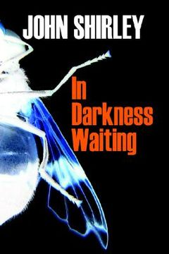 portada in darkness waiting